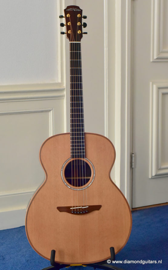 Avalon Pioneer L1-20 Red Cedar - Indian Rosewood (new)