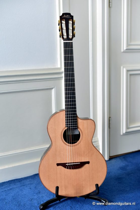 Lowden S25-J Indian Rosewood - Red Cedar (new)