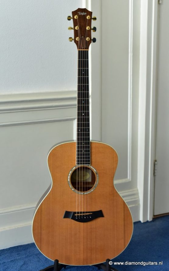 image of taylor gs5