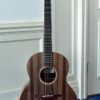 image of the guitar