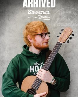 image of sheeran by lowden
