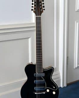 image of Yanuziello 12 string